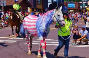 Things To Do In Temecula On July 4th